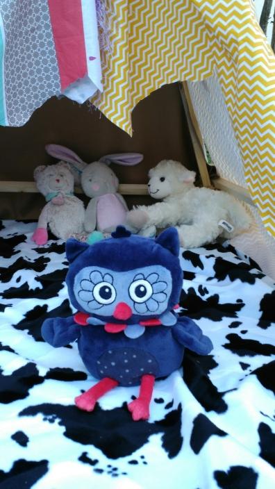 les doudous ont trouvé un refuge